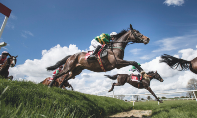 Win Tickets to the 2019 Irish Jump Racing Festival at Punchestown Racecourse