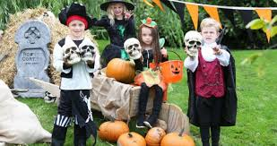 Win a family pass to the Wicked Adventures at Tayto Park